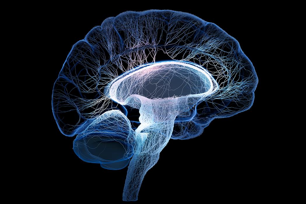 科學家發現,中年時面臨壓力,會使大腦縮小,記憶力變得更糟。研究顯示,壓力荷爾蒙高...