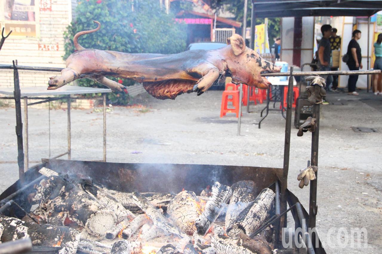 田中馬拉松最強補給提供烤豬。記者林敬家/攝影