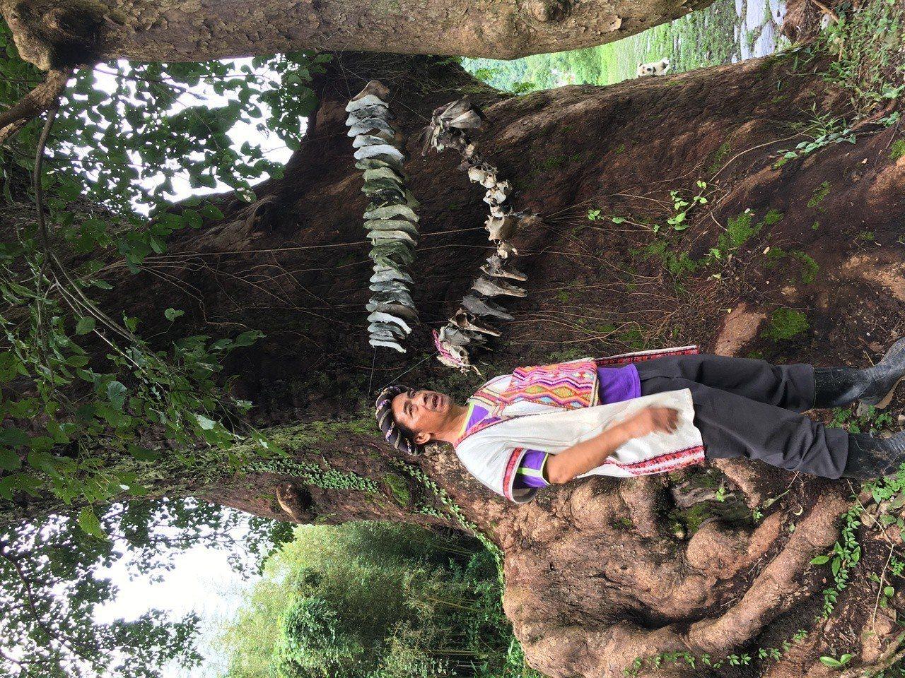 部落旅遊是花東的一大亮點。寧靜樸實的台東永康布農部落,位在鹿野高台附近丘陵地上,...