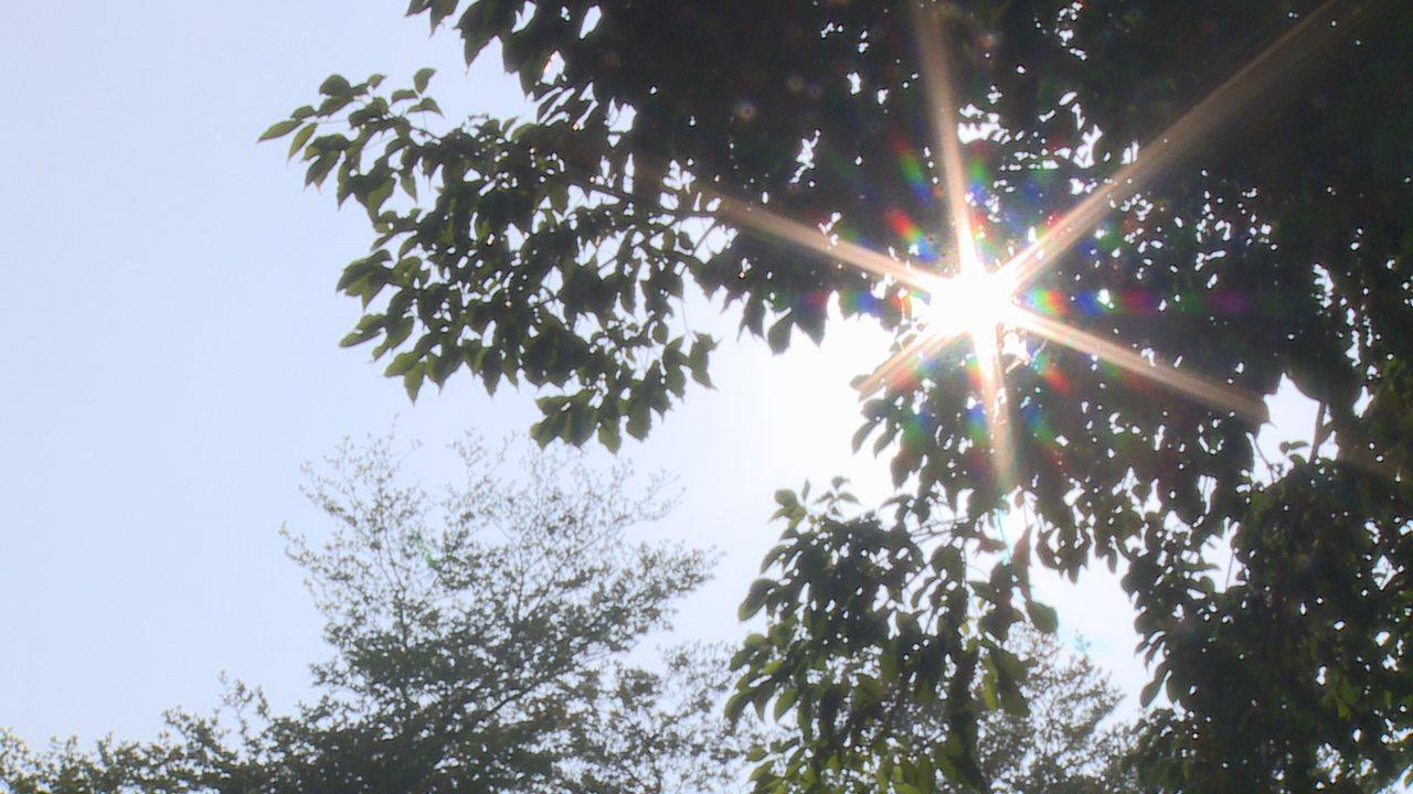 把握今天好天氣!根據中央氣象局最新預報,明天(12日)下半天起隨東北風增強,北部...