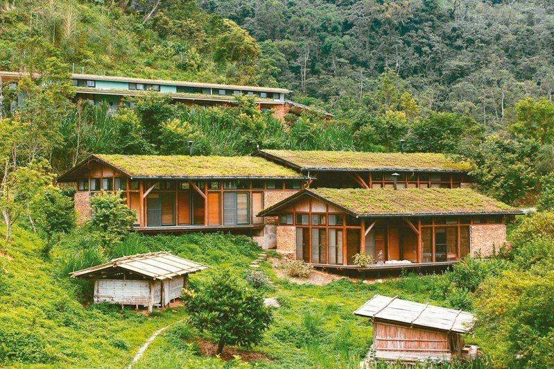 斜頂茅草屋矗立於綠色山林間。 圖/有行旅提供
