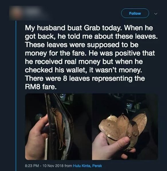 馬來西亞網友法菈分享他先生收到的車資,從鈔票變成落葉的奇事。圖擷自馬國中國報