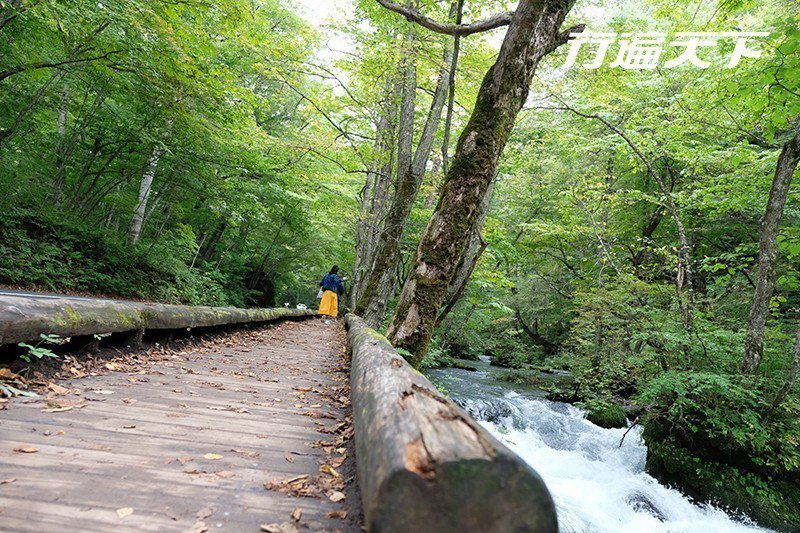 沿溪完備的健行步道讓人逍遙而行。  攝影|行遍天下