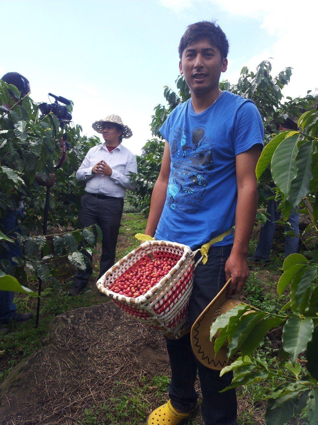 阿里山鄒築園方政倫栽種的咖啡豆,擁有獨特龍眼乾及威士忌風味,榮獲今年亞洲咖啡年會...