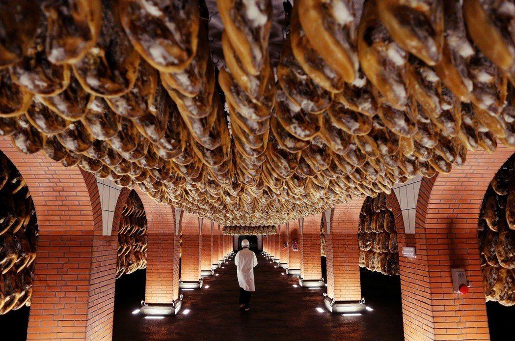 西班牙豬:密集恐懼不要怕,這是西班牙名產生火腿Jamon。 圖/路透社