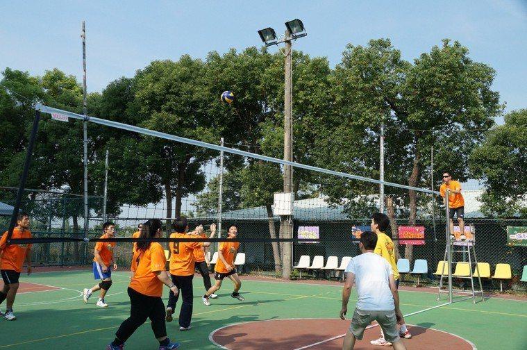 排球示意圖。圖/大林慈濟醫院提供
