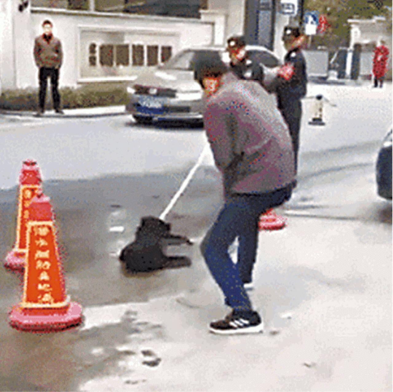 杭州傳出殘殺狗迎亞運。 圖擷自youtube