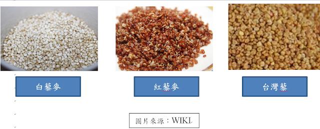 各種藜麥的比較。陳柏鈞營養師整理