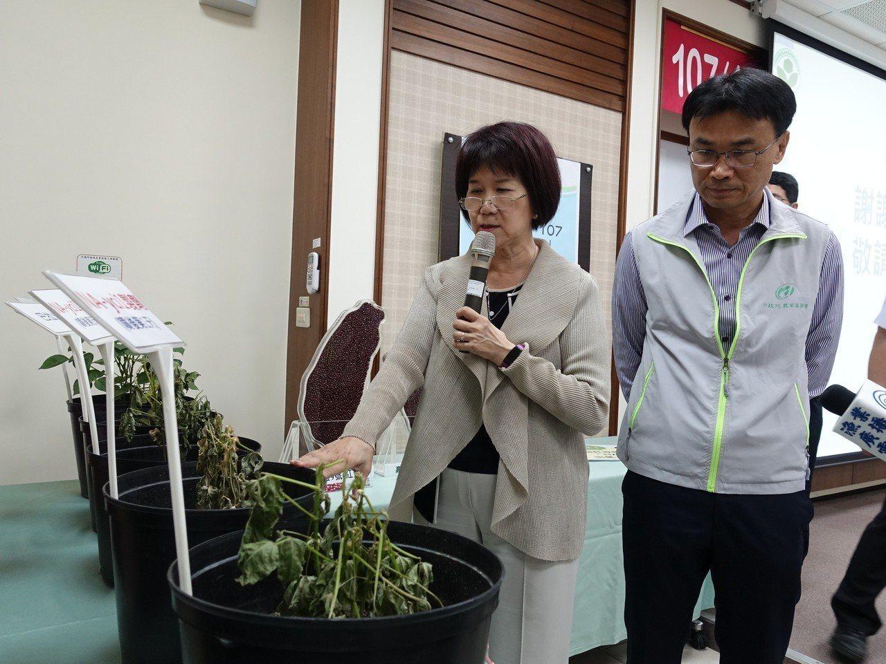 農科院推出新型紅豆植株乾燥劑NA-yci1,效果不錯,今年將推動田間大面積試驗。...