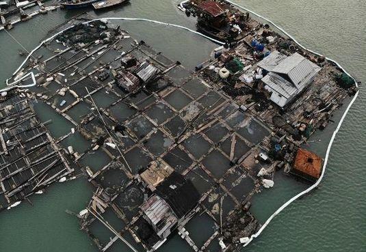 福建泉州爆發「碳九汙染事件」,造成港口汙染。 (俠客島)