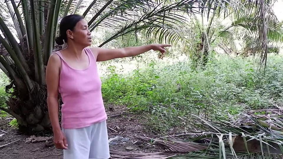 菲律賓女農民雷皮克,日前見到自己農場的山羊,產下一隻樣似「半人半豬」的牲畜。圖擷...