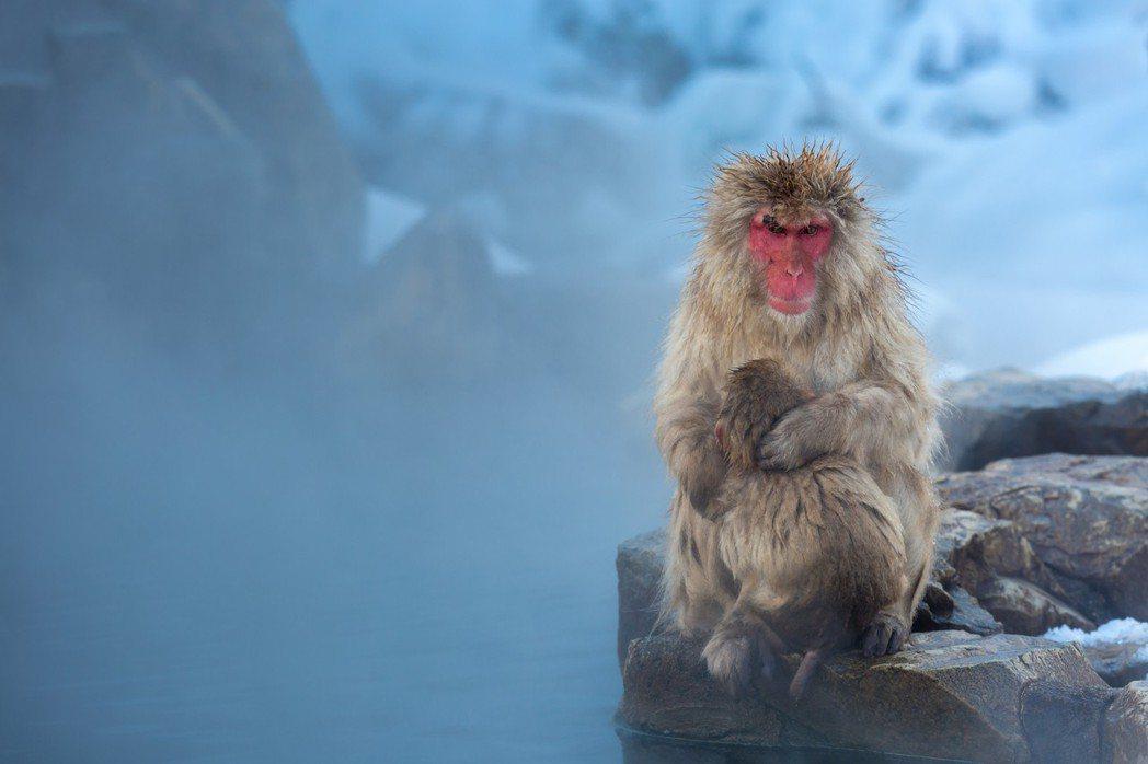 冬天是感冒的高發季節,尤其是小雪節氣過後,所以就要注意防寒保暖。