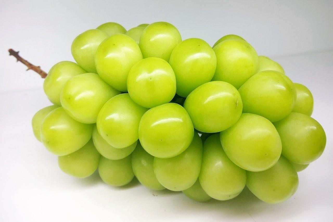 開幕首日限定,售價1,280元「長野麝香葡萄」買一送一。圖/微風提供