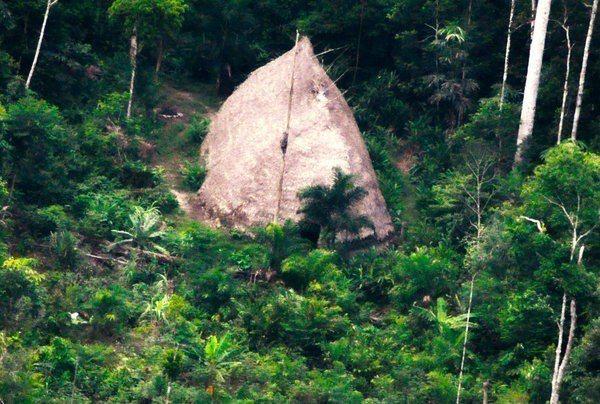 查哇利河谷族的茅草屋。 (美聯社)