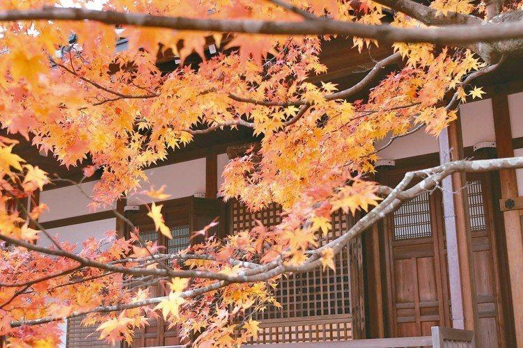 日本景氣溫和復甦,專家看好觀光、工廠自動化、健康醫療等題材。 (本報系資料庫)