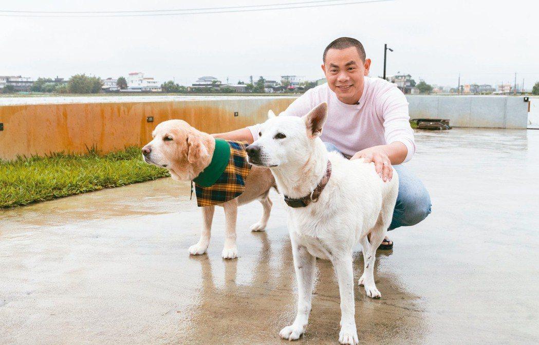 江振誠家的Lucky(左)和鄰居家的白熊。 記者陳立凱/攝影