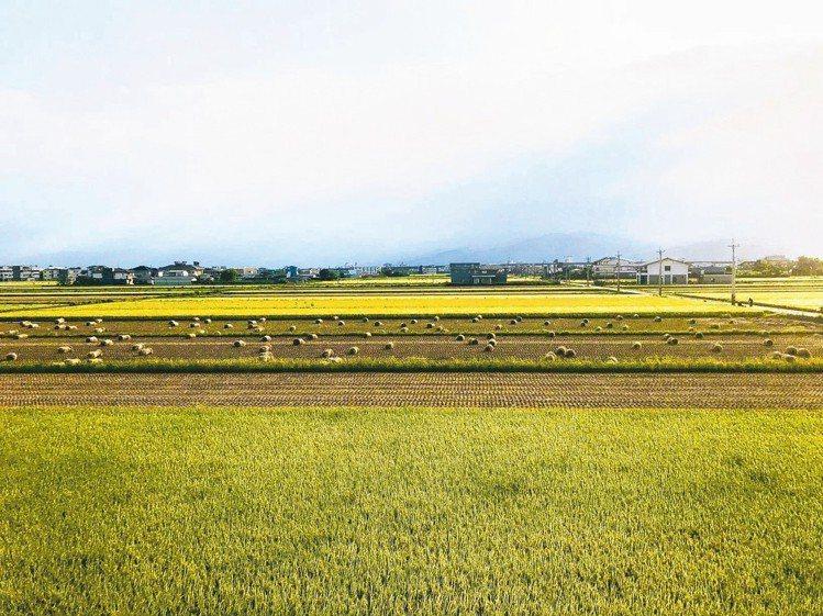 江宅望出去的宜蘭鄉居秋景。 圖/江振誠提供