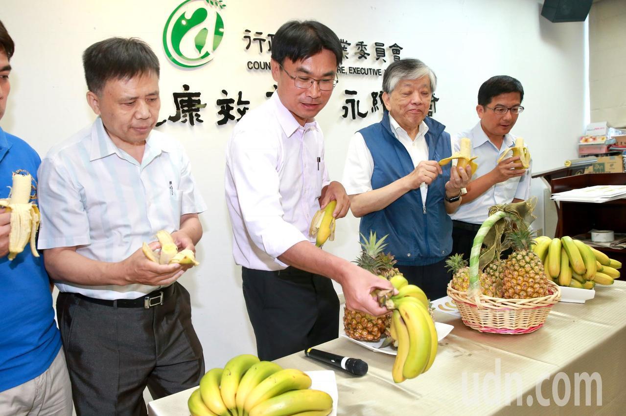農委會副主委陳吉仲 (左二)。圖為今年6月農委會說明如何解決香蕉、鳳梨的產銷問題...