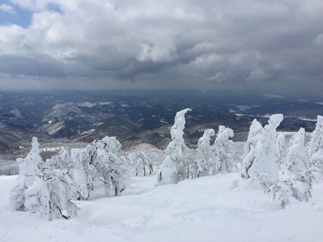 日本秋田冬季的樹冰景象。圖/遠東航空提供