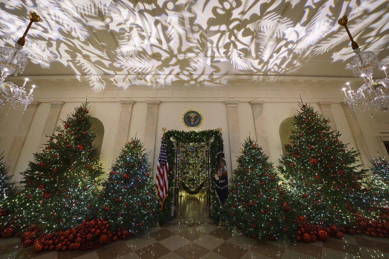 藍廳高達18英尺的耶誕樹,來自北卡羅萊納州。 美聯社