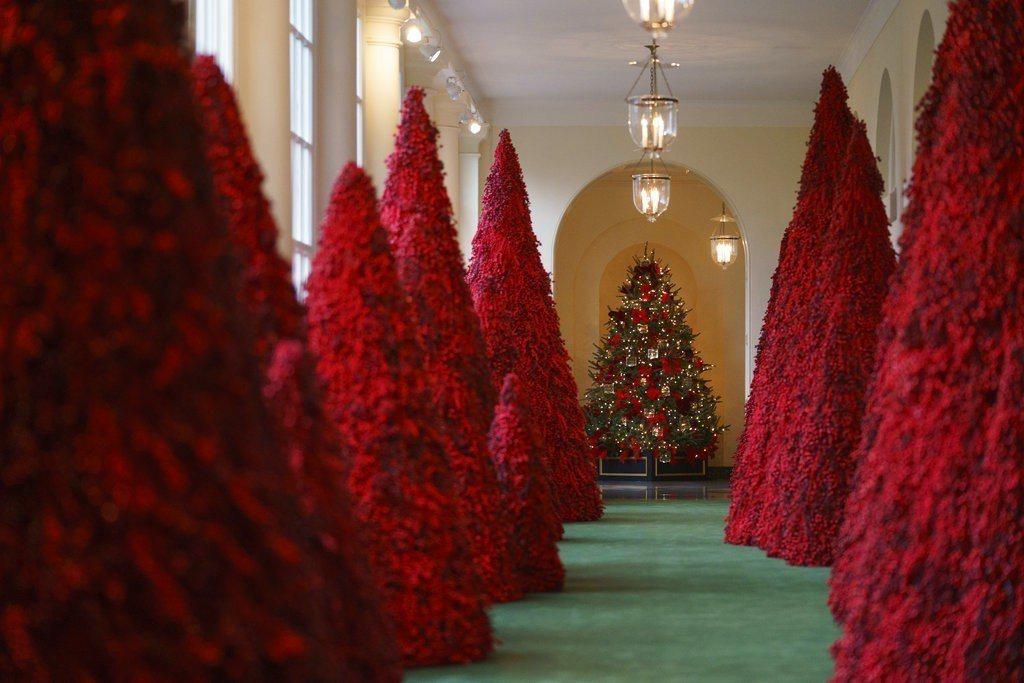 白宮東走廊鋪上綠地毯、擺滿大小不一的紅梅樹,充滿耶誕氣氛。 美聯社