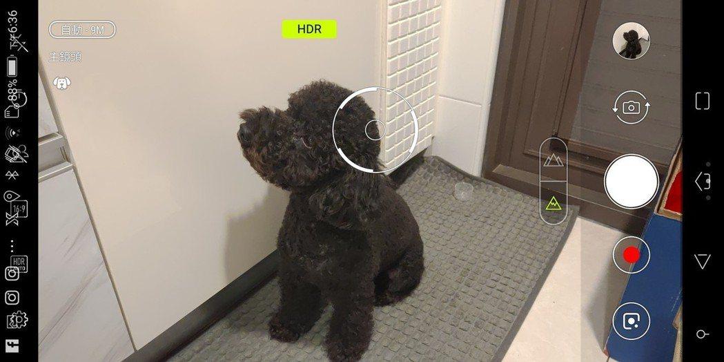 ROG Phone攝影AI化,是狗就是狗、是食物就是食物。 彭子豪/攝影