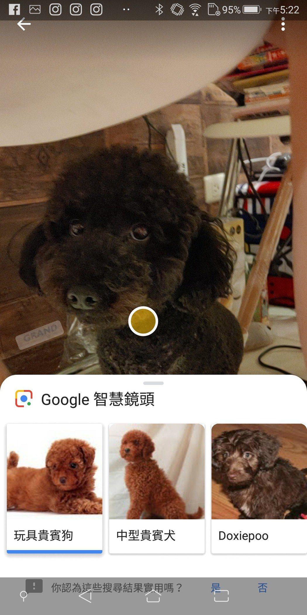 Google智慧鏡頭速度也頗快。 彭子豪/攝影