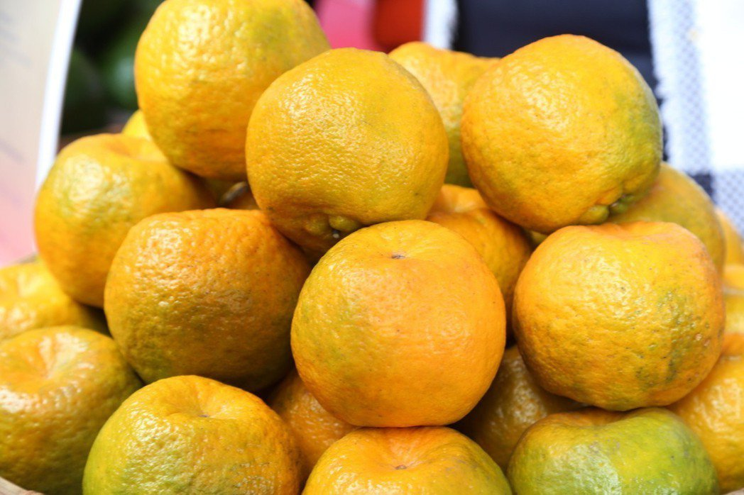 柑橘。記者謝恩得/翻攝