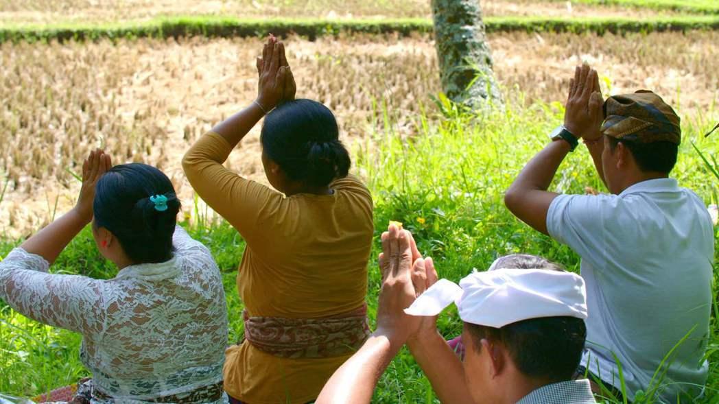 印尼峇里島千年智慧蘇巴克。圖/公共電視提供