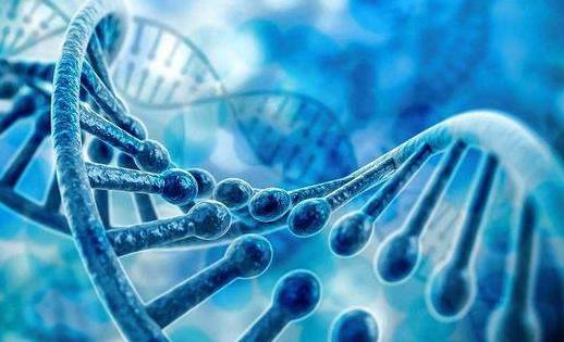 「基因編輯」從一開始,就是極富爭議的研究話題。 圖/百戰網