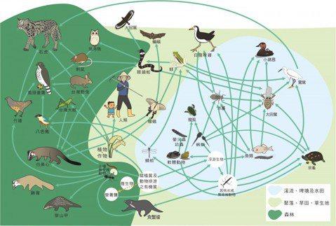 顧生態還是顧生計?——環評報告之外,生態顧問的新角色