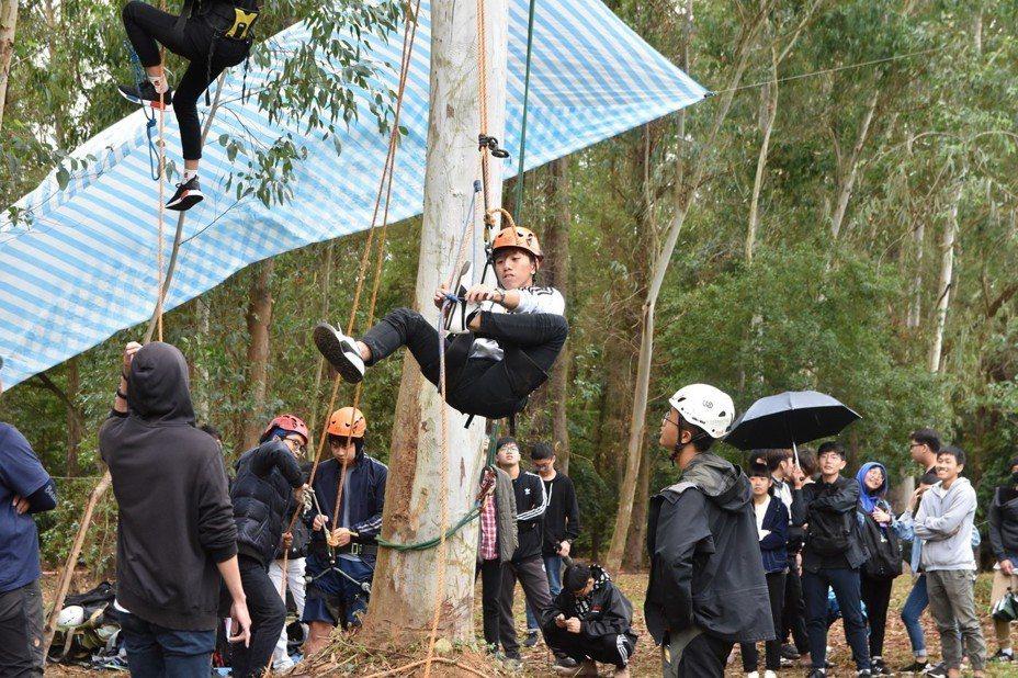 建景系舉辦攀樹體驗,讓學生探索大自然。失去平衡的同學正利用自己的力量克服。圖/南華大學提供