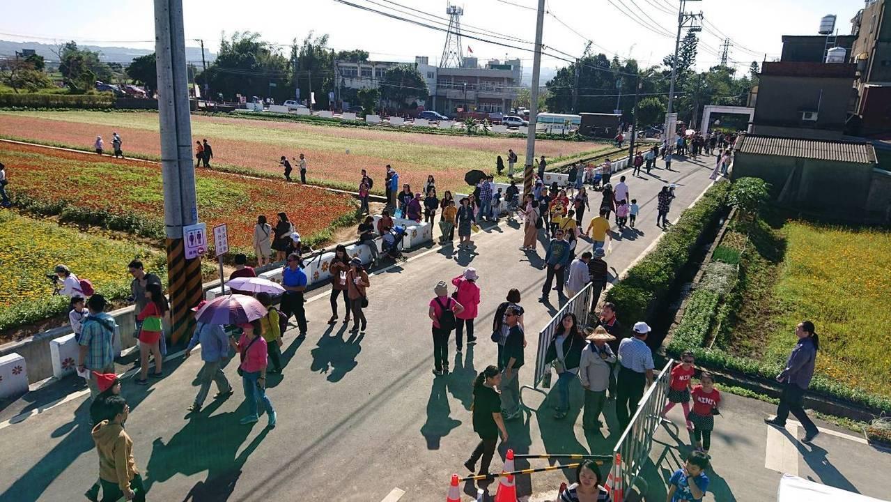 楊梅花彩節一早就湧入人潮。圖/楊梅警分局提供