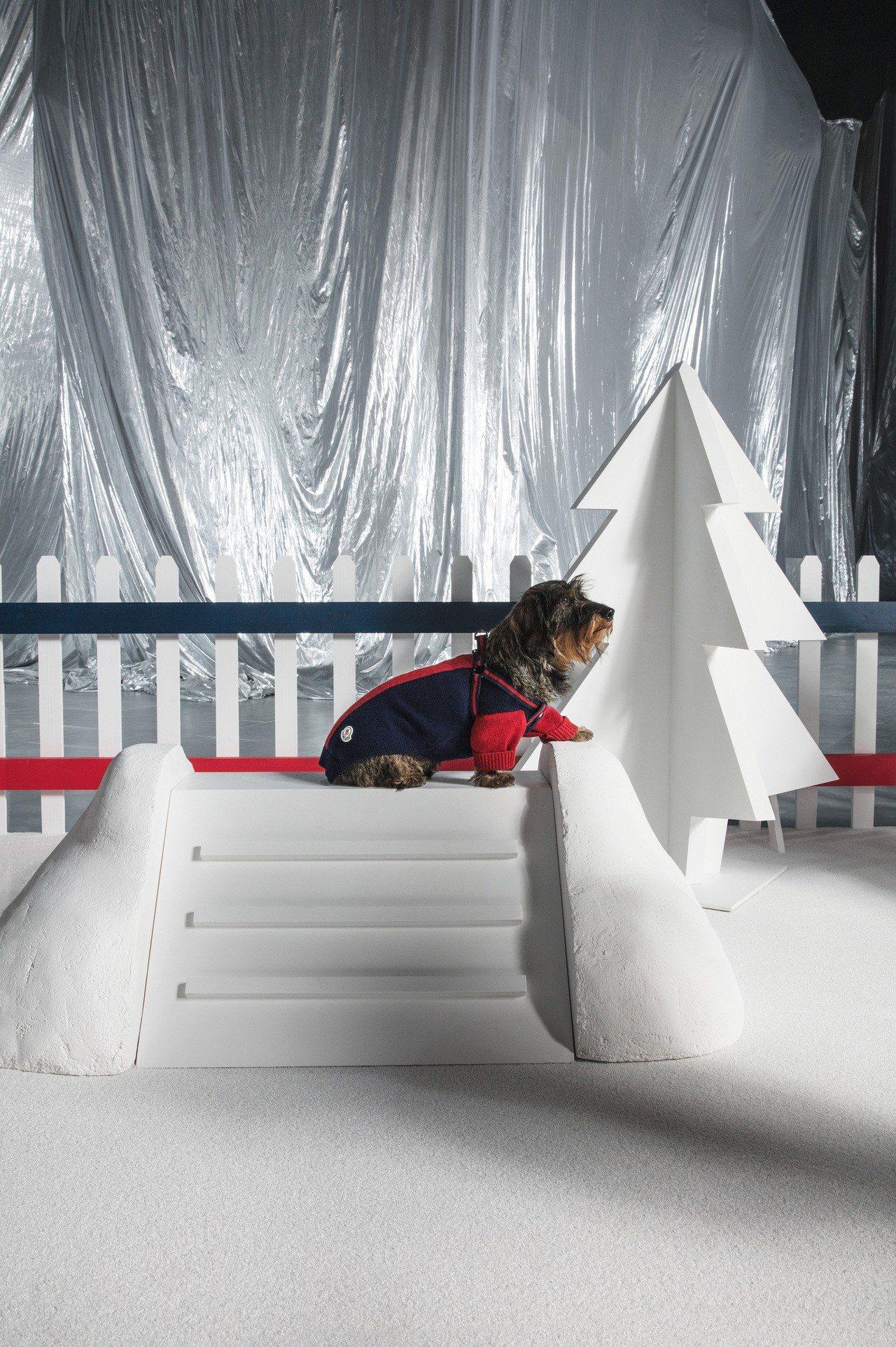耶誕節快到了,可用MONCLER Poldo Dog Couture愛犬訂製服為...