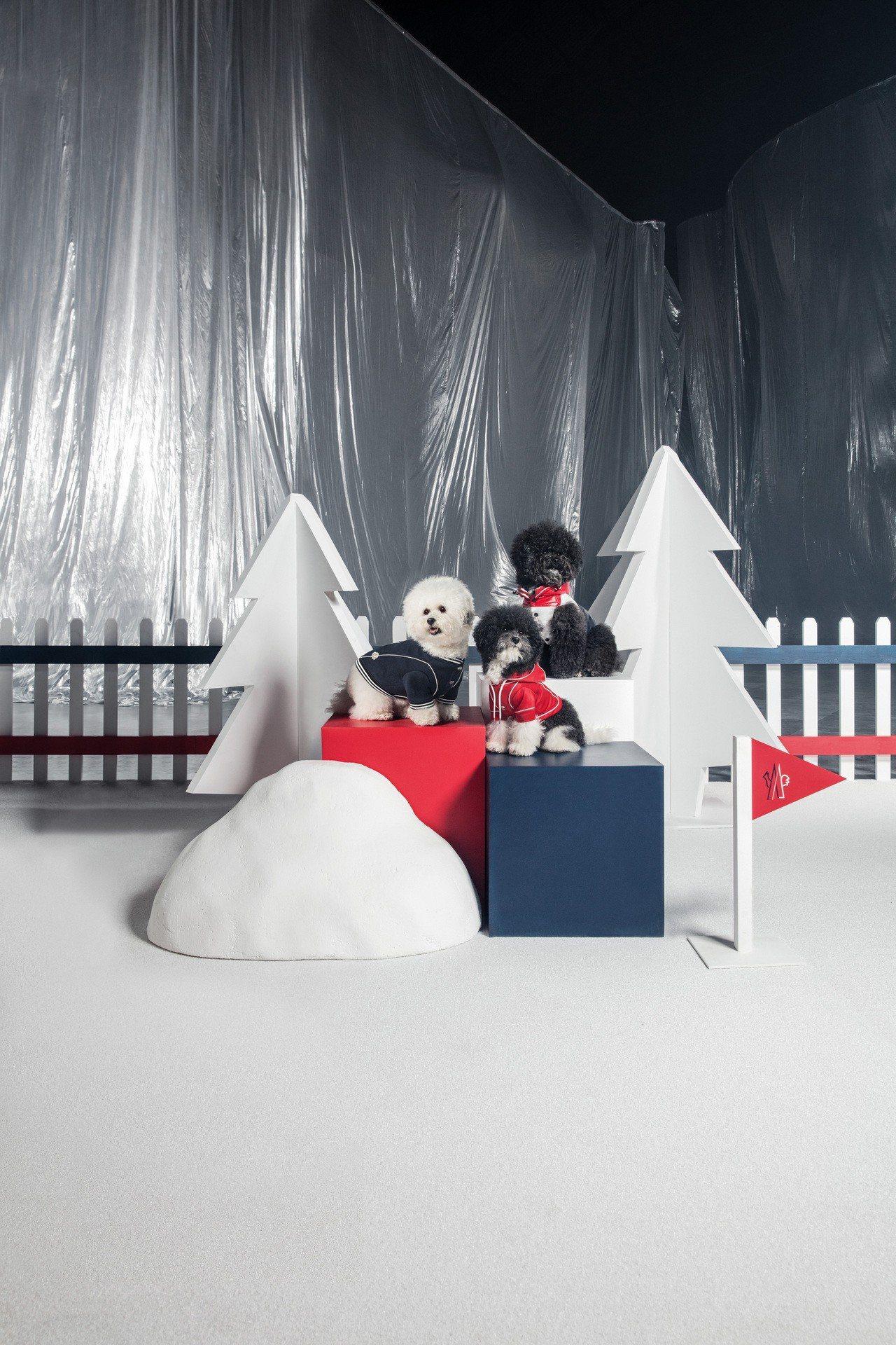 MONCLER Poldo Dog Couture愛犬訂製服系列推出可雙面穿的紅...