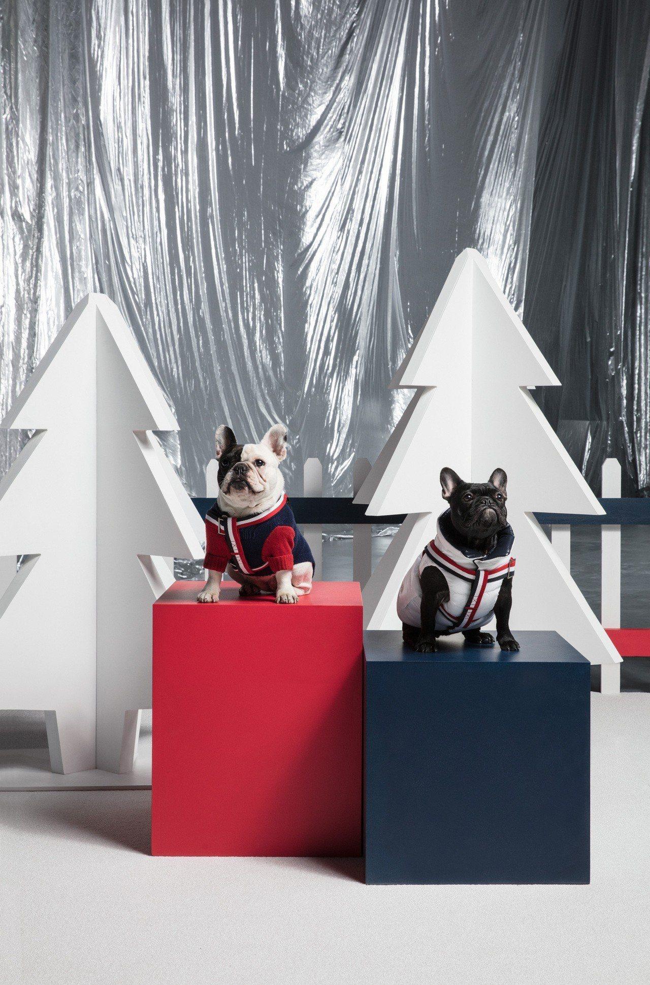 MONCLER Poldo Dog Couture愛犬訂製服系列有可拆卸的風帽款...