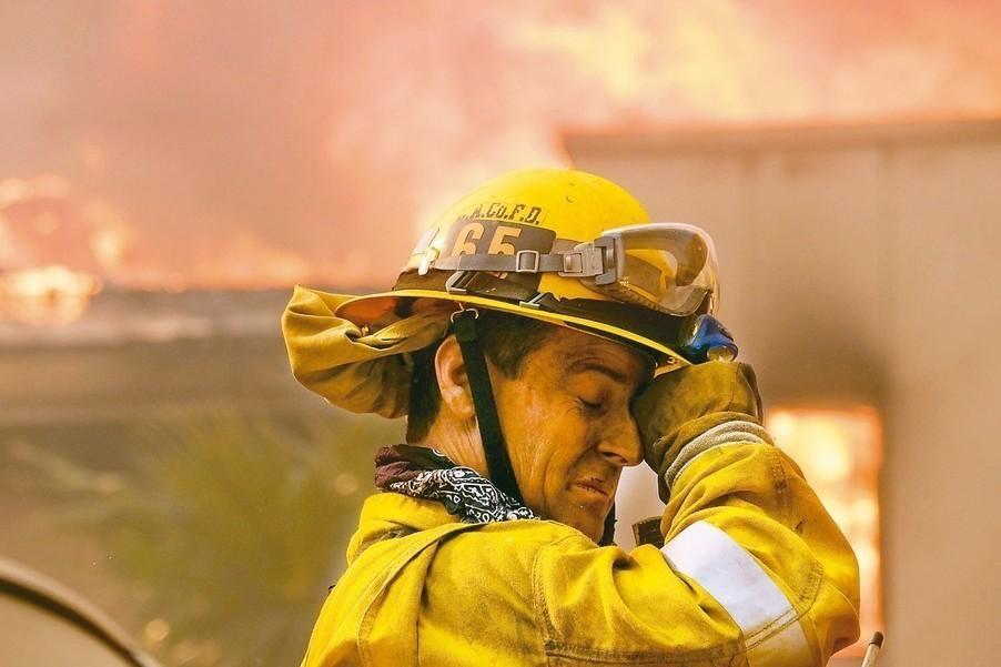 今年加州野火是當地歷來死傷最慘重的一次。圖為十一月的野火現場。 (美聯社)