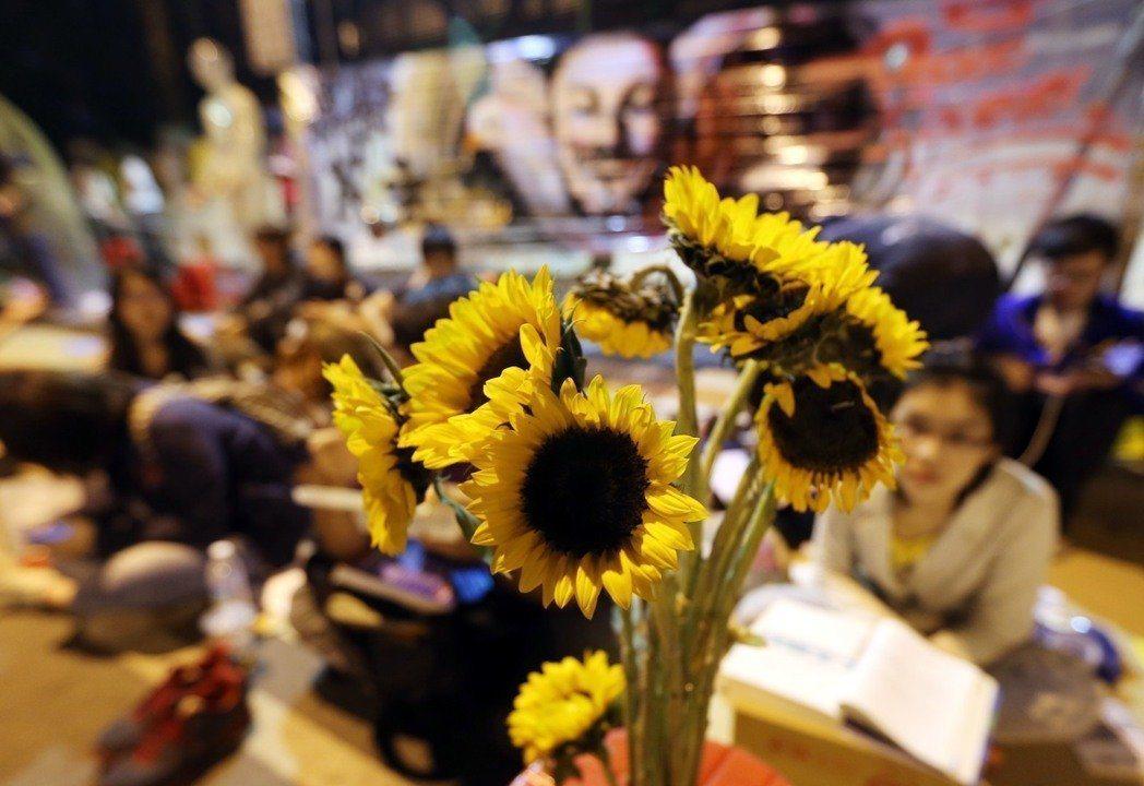太陽花學運引動的政治狂潮,至今仍持續湧動。圖╱聯合報系資料照片