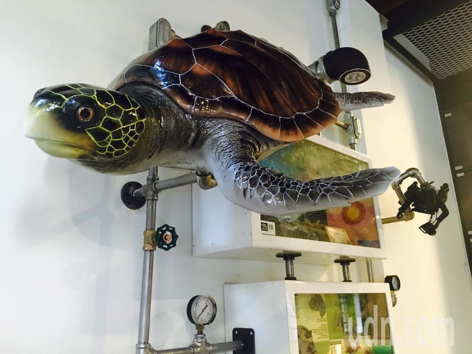 蔡正男開設的正好友生態環保旅店,旅店就像間有趣的海洋生態教室。圖/蔡正男提供