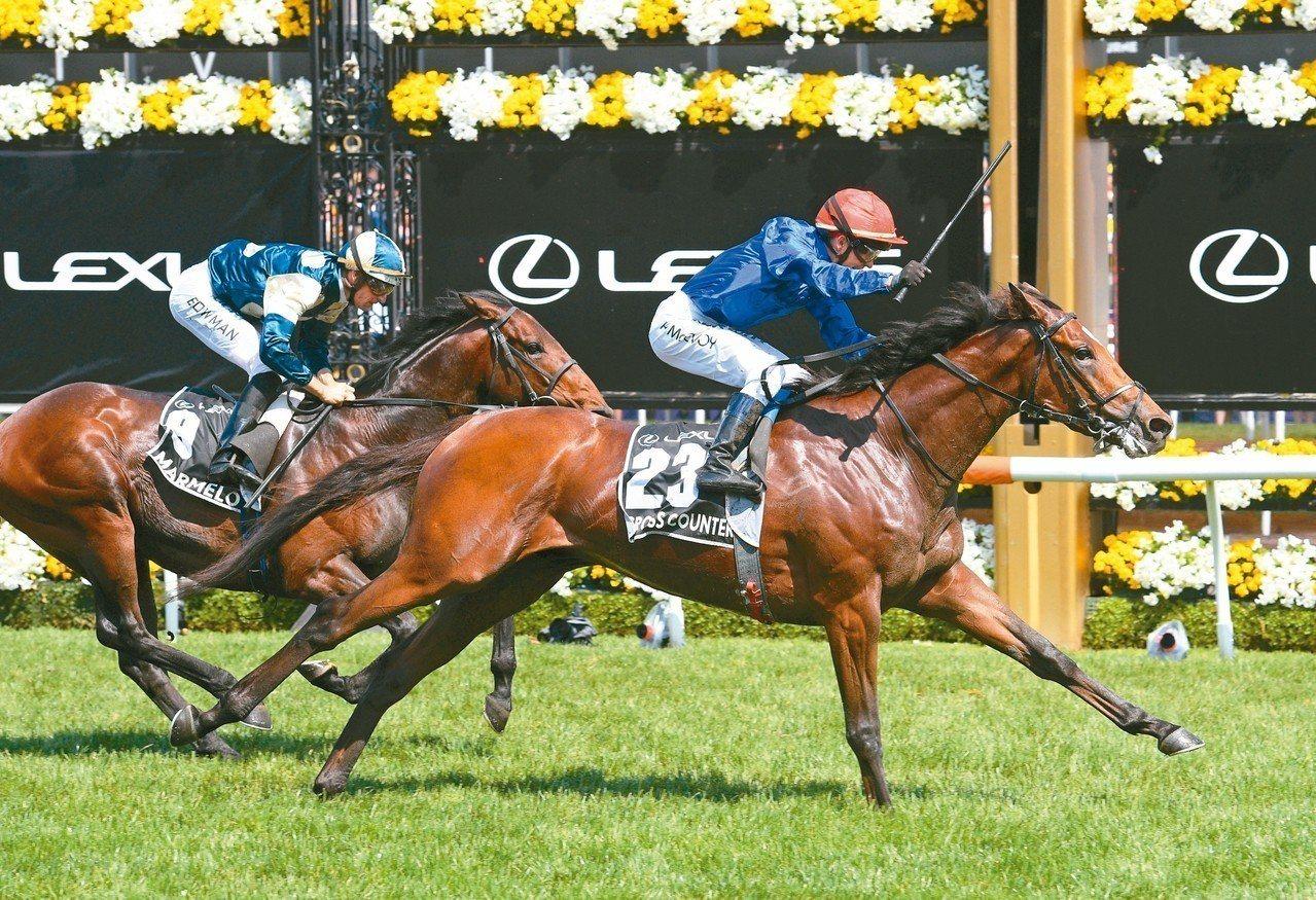 墨爾本杯賽馬是國定假日級的年度盛事。 圖/主辦單位提供