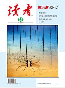 讀者雜誌12月號內容精采。 圖/摘自讀者官網