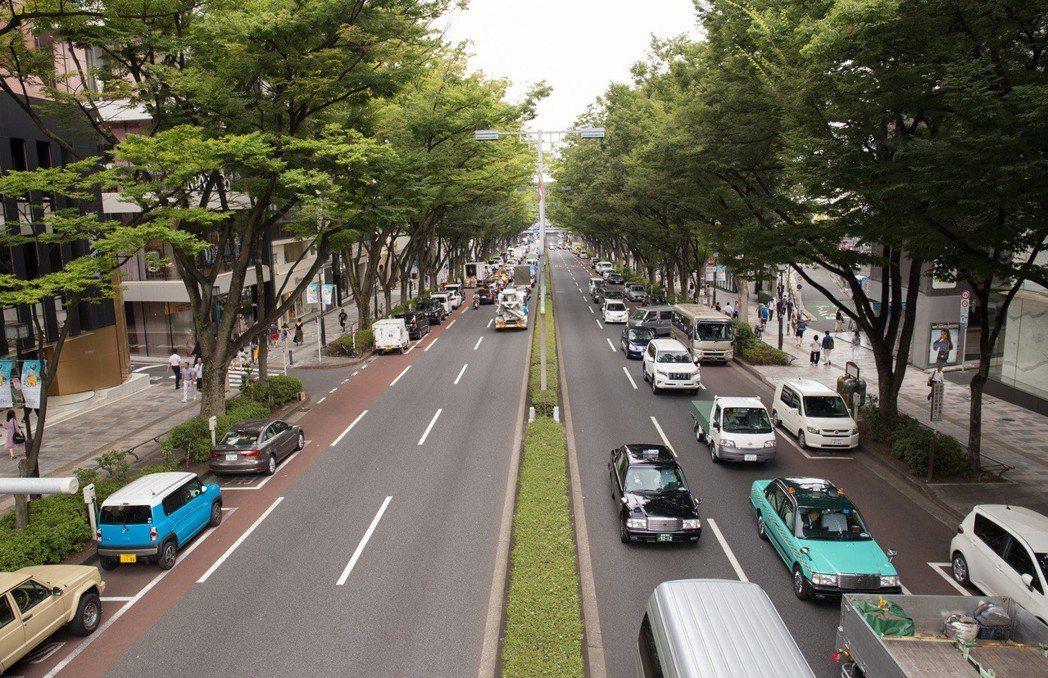日本表參道的櫸木大道。 攝影/張世雅