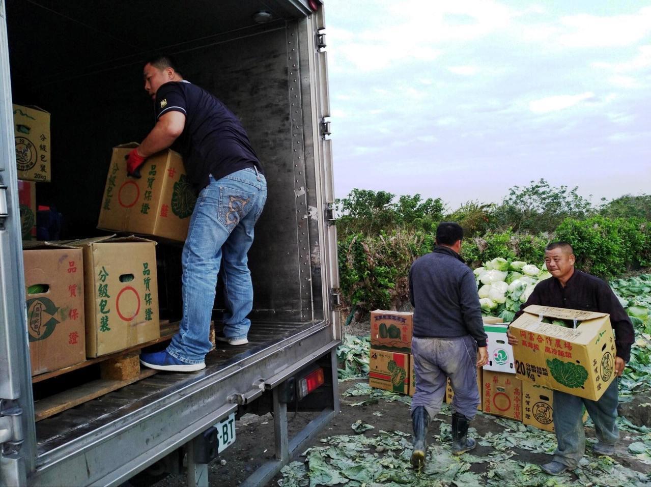 全台有一百多家直營和加盟店的彰化縣唯賀餐飲集團,以高價向青農採購高麗菜100箱。...