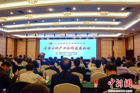 兩岸企業家峰會漳州分會場舉辦古雷石化產業合作發展論壇,強調推進兩岸石化全產業鏈整...