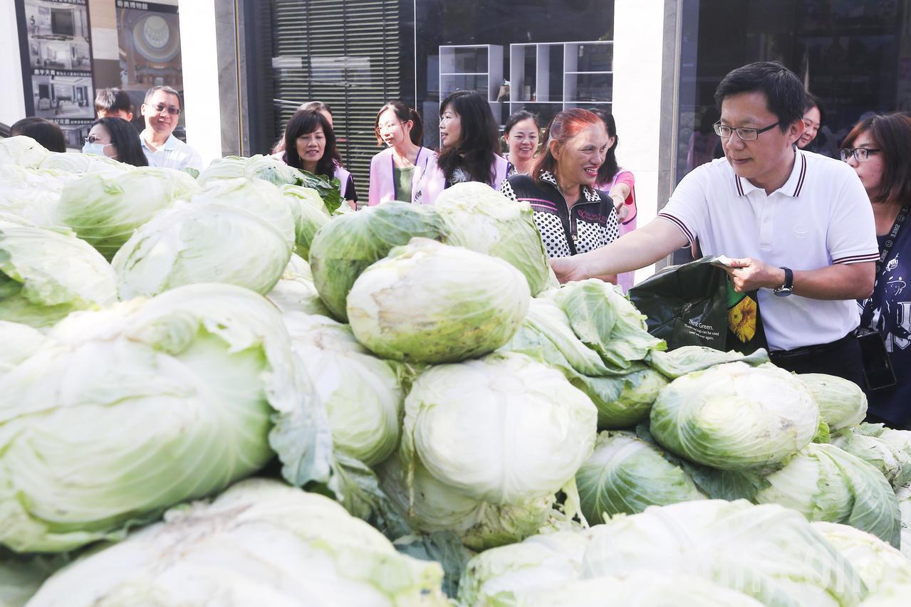 立委張廖萬堅(右)接獲設計師呂金豐之邀,聯合收購2萬顆高麗菜並協助高麗菜農度過銷...