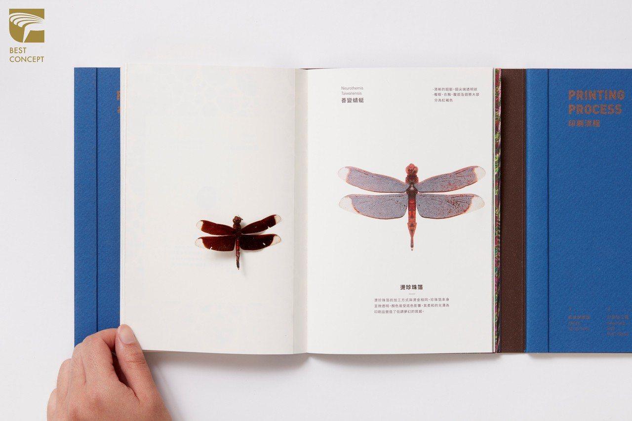 「昆蟲印刷指南」用說故事的方式取代原本枯燥的印刷理論,發揮設計的創意、多元。圖/...