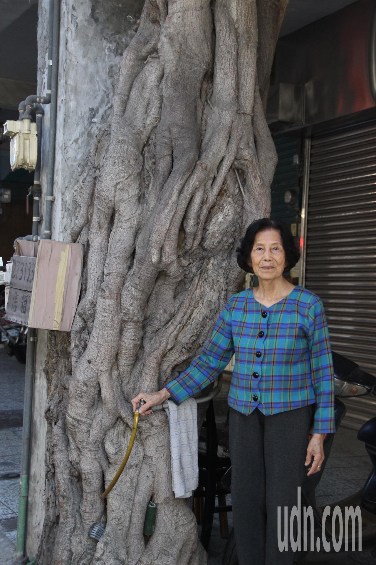 「奇屋」女主人施黃宿比榕樹樹幹還嬌小。記者林敬家/攝影