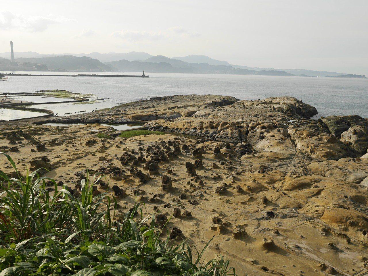 與野柳有著相同地質美景的基隆和平島公園,也要爭取成為地質公園。記者吳淑君/攝影