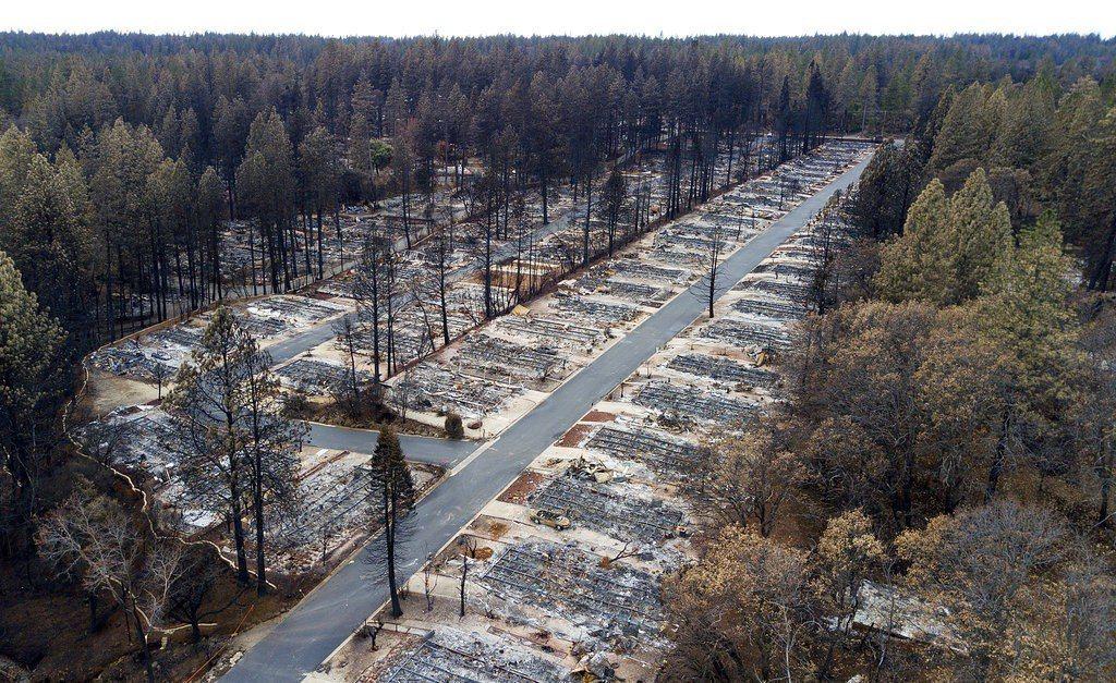 美國加州史上死傷人數最高、房舍毀損最慘重的山林大火,上個月不但奪走數十條生命,數...