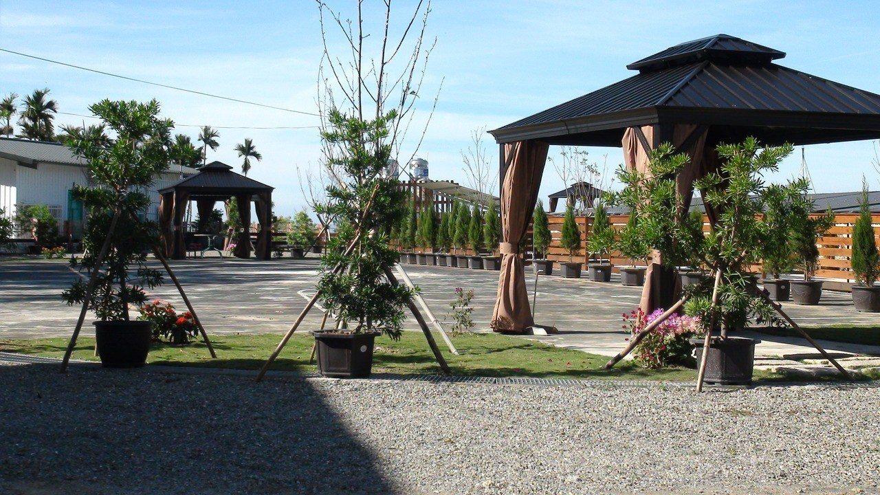 金獅國小廢棄校區正由民間承租改成生態教育園區。記者謝恩得/攝影